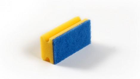 Svamp med Blå Pad.jpg